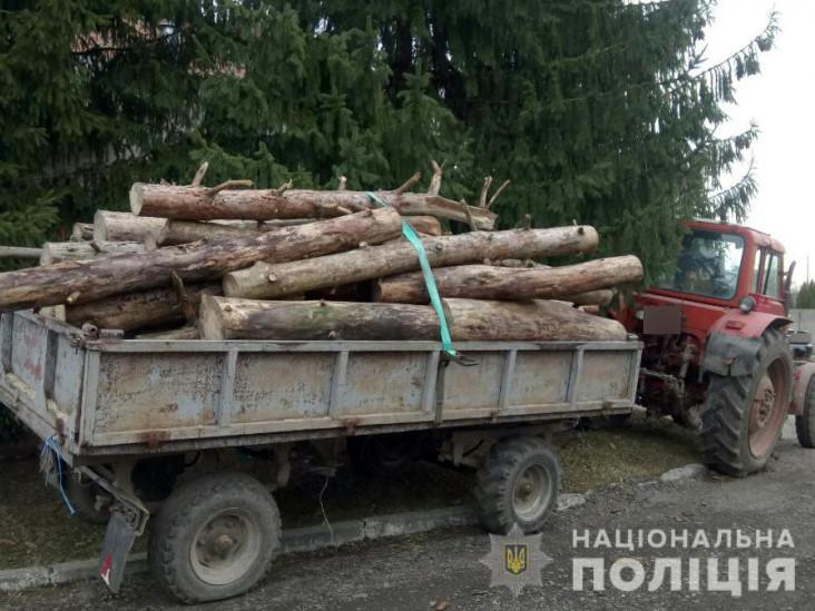 Неподалік Нових Кошар затримали трактор із сосновими колодами