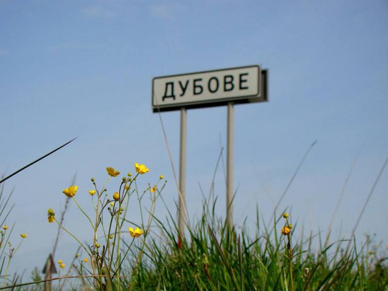У Дубовській ОТГ розробляють стратегію розвитку громади. ВІДЕО