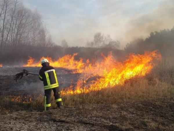 На Ковельщині горіла дачна ділянка та суха трава / Фото ілюстративне