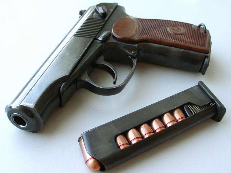 У селі Дубове поліція вилучила пістолет та п'ять набоїв / Фото ілюстративне