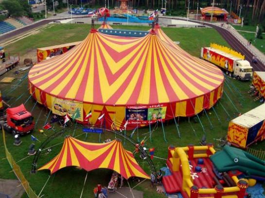 У Ковелі хочуть заборонити пересувні цирки із тваринами / Фото ілюстративне