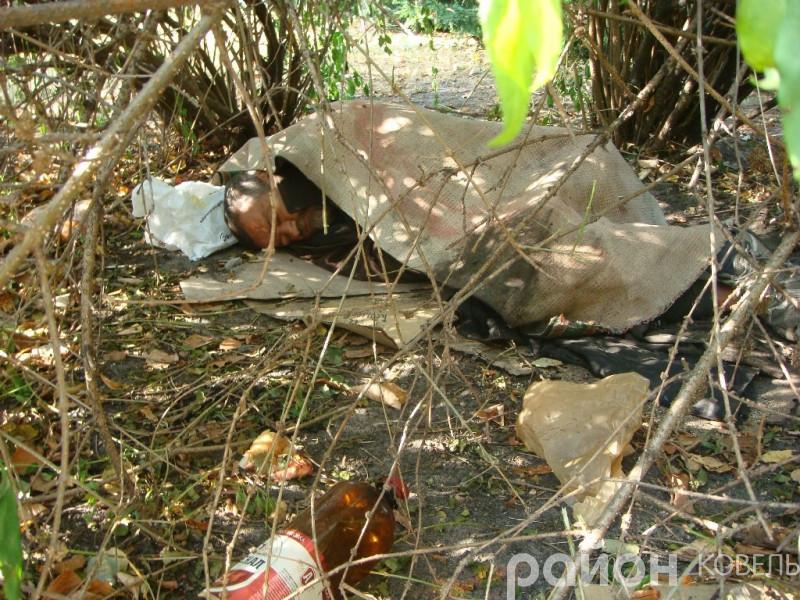 На меморіалі Слави у Ковелі живе безпритульний