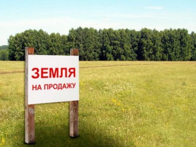 Продаж землі / Фото ілюстративне