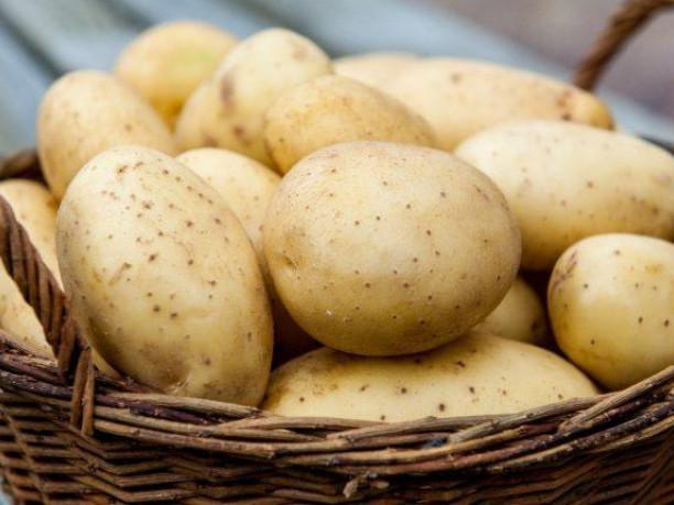 Картопля / Фото ілюстративне
