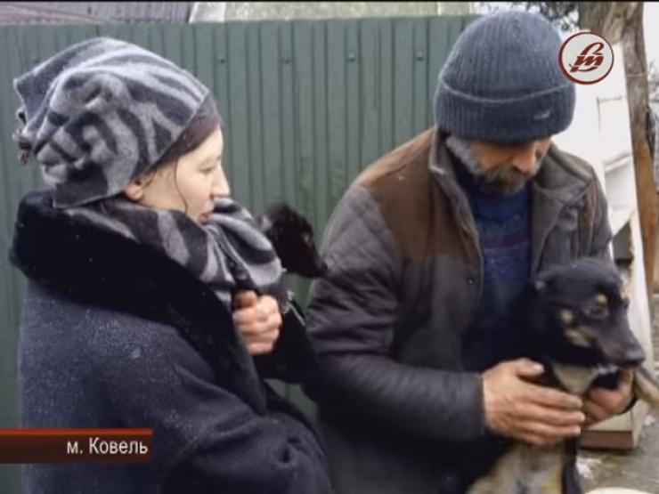 Сім'я, в якій утримуються собаки