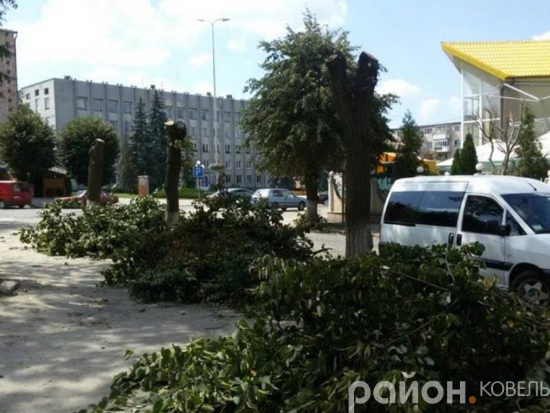 Зрізання дерев на вулиці Олени Пчілки у Ковелі