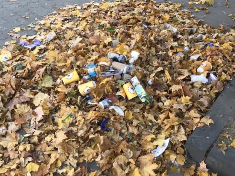 У центрі Ковеля не прибирають опале листя