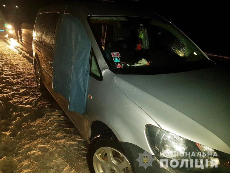 Поблизу села Гулівка в ДТП загинула 8-річна дитина