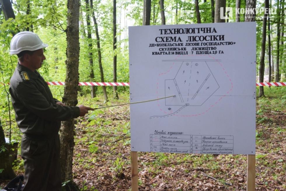 Головний інженер Сергій Петрук розповідає про розташування на ділянці всіх складових лісосіки