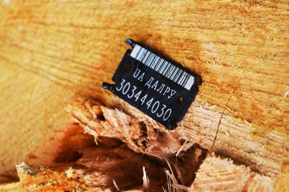 Пластиковою биркою маркують дерево