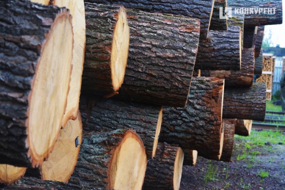 Довжина пиловника дубового сягає від 1,05 сантиметра до 6 метрів довжиною. Якщо на чотирьох метрах є один сучок, який може цей кусок перевести у третій сорт, то потрібно відрізати 2,5 метра, продати першим сортом чи фанерою, а сучок лишити на другий кусок
