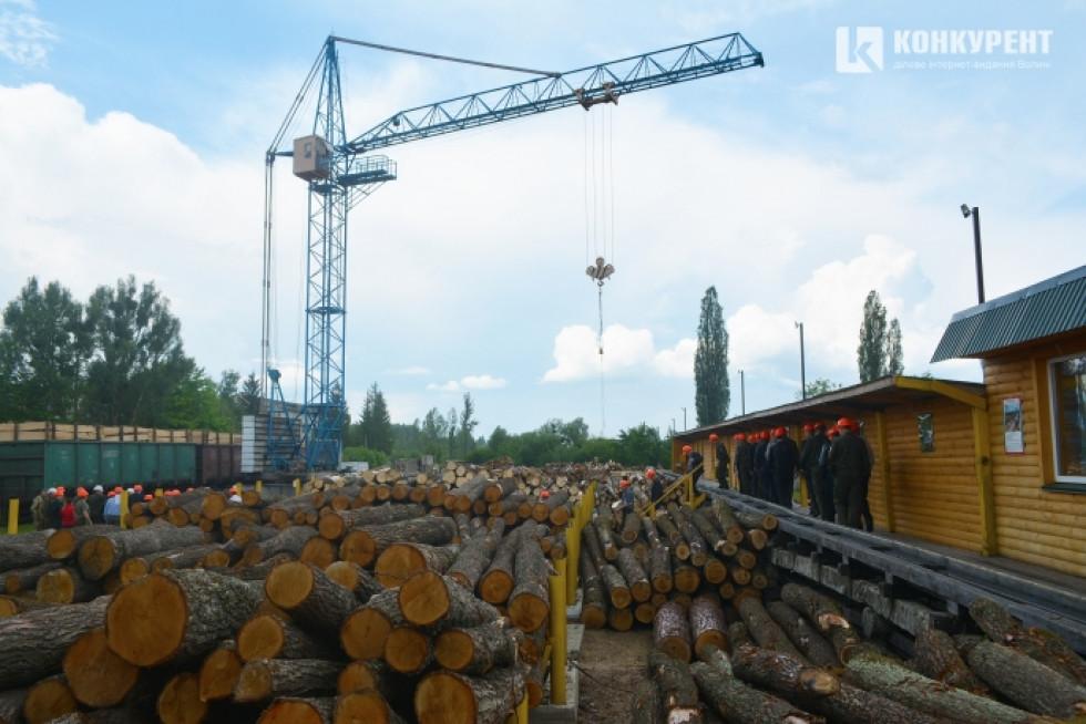 Вільха, сосна, дуб, граб, береза – основні лісоматеріали Ковельського ЛГ