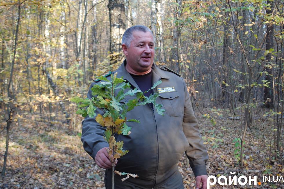 Начальник відділу лісового господарства Волинського ОУЛМГ Борис Бабеляс