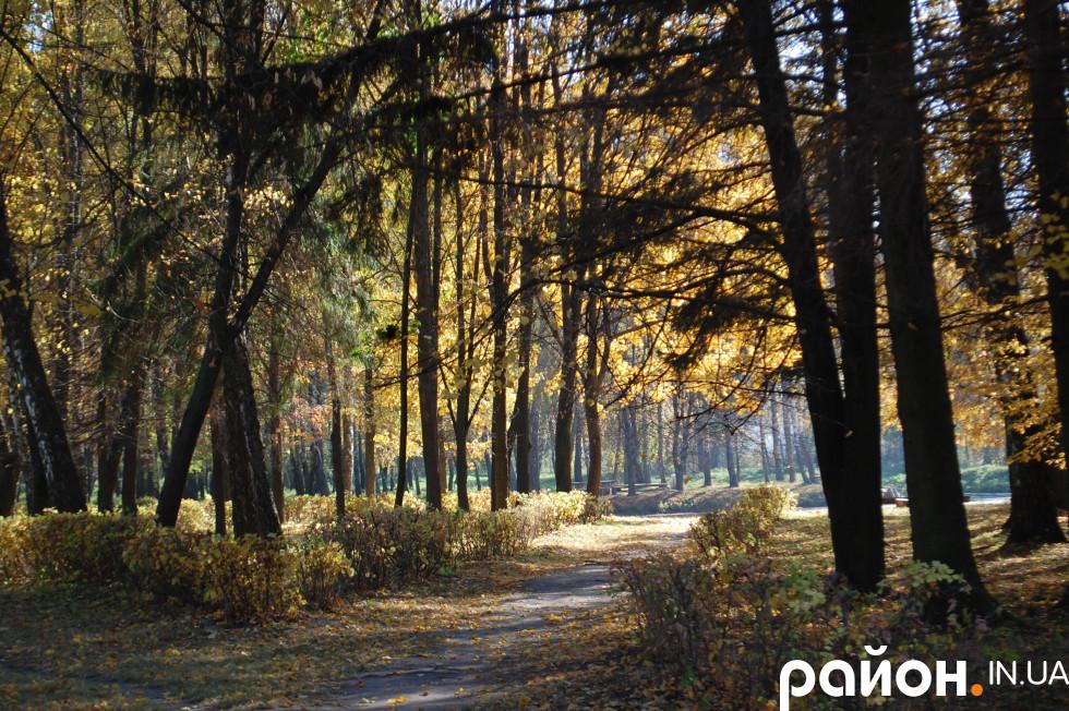 Лісопарк, який посадили з нагоди 100-річчя від дня народження поетеси Лесі Українки