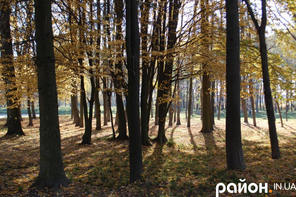Лісопарк Лесі Українки