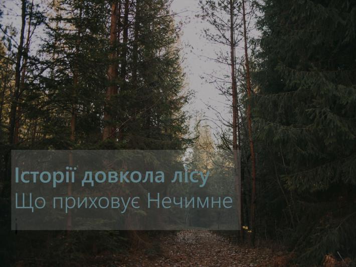 Стежка лісом веде до озера Нечимне