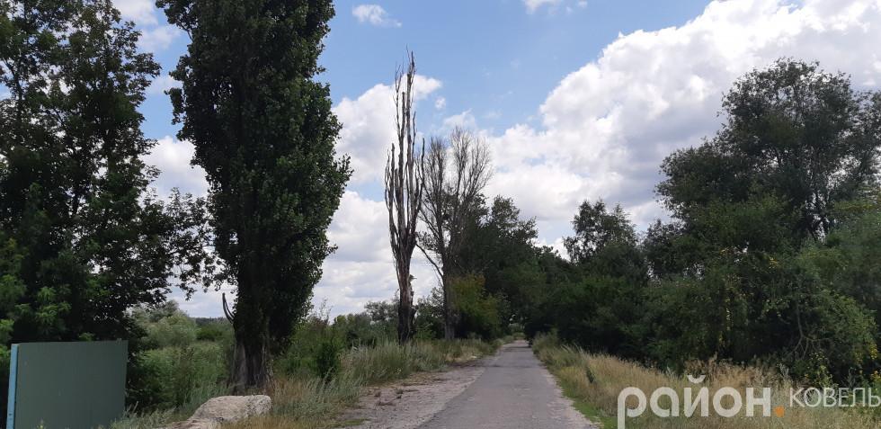 Дорога до «заводу смерті»