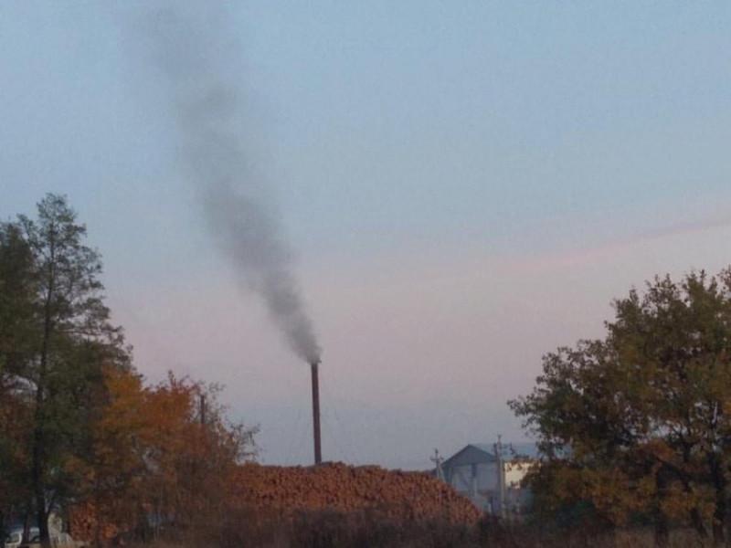 На околиці села Колодяжне смердить завод, який виготовляє деревне вугілля